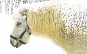 Pony and Birches